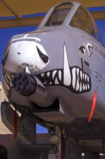 Nose close-up of A-10C, 80-0232 / BD, 917 W / 47 FS