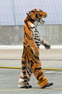 Armée de l'Air EC.01.012 crew-chief in a tiger outfit walking on the ramp, during the 2008 NATO Tiger Meet at BAN Landivisiau